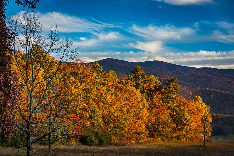 Lots of Fall color in Cades Cove