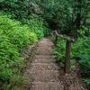 Handy steps