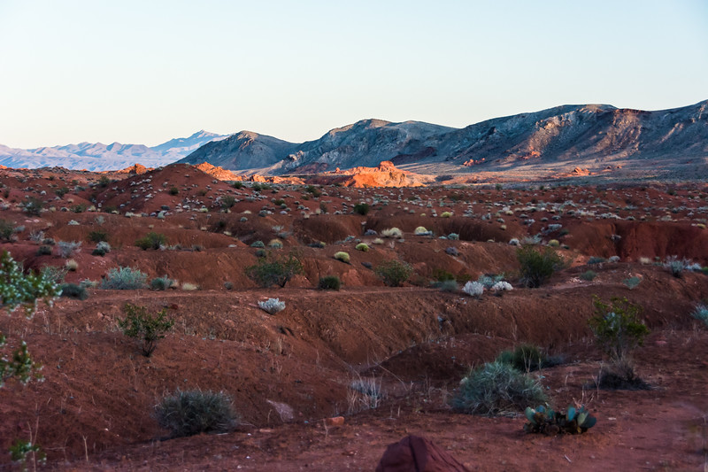 Evening stop at Valley of Fire State Park