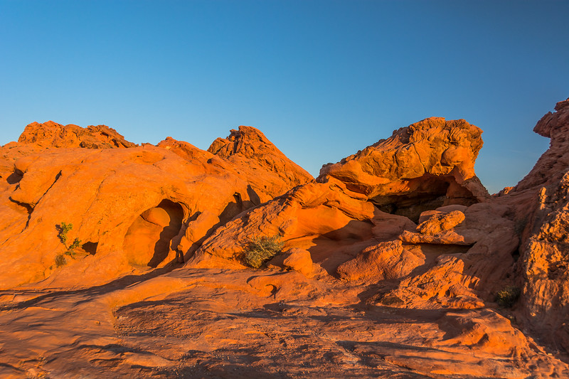 It does not take long for the soft early light to turn to the typical harsh desert light.
