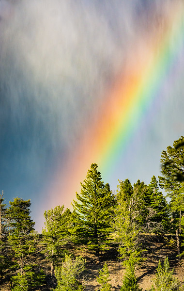 Even though there was rain, there was also sunshine, so I stayed on the lookout for a rainbow and was not disappointed.