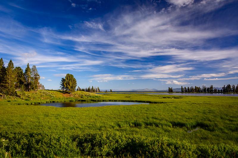 One area of Yellowstone Lake near Fishing Bridge