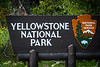 Yellowstone was designated the first US national park in 1872.