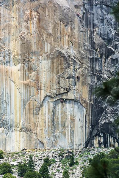 Lots of El Capitan climber pics.  I'm glad they wear bright colors.
