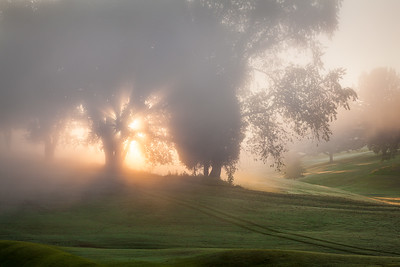 Blaze of Dawn