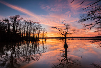 Reelfoot Sunset Also taken from Walnut Log Road