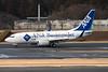 """JA13AN Boeing 737-781ER c/n 33880 Tokyo-Narita/RJAA/NRT 25-02-11 """"ANA BusinessJet"""""""