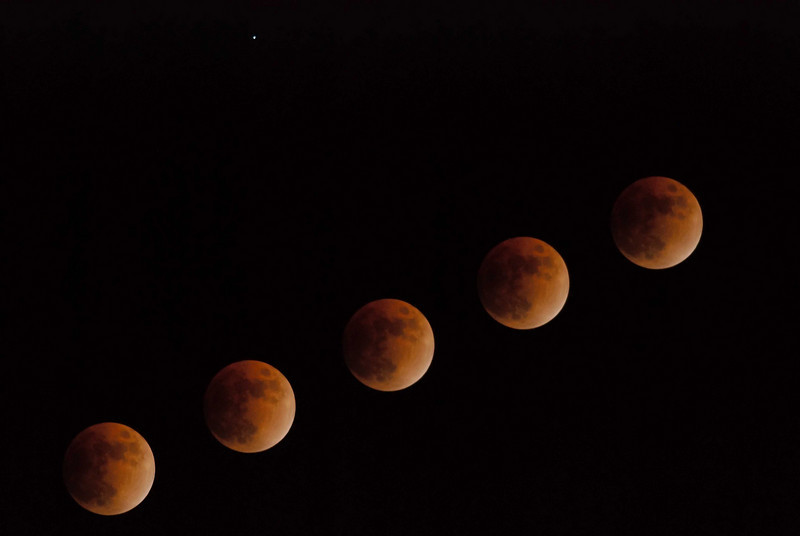 Composite photo of the lunar eclipse on February 20, 2008. This series was taken during the middle of the eclipse.