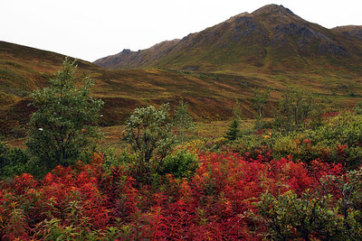 Hatcher Pass, north of Palmer, Alaska