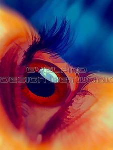Art eyes 002