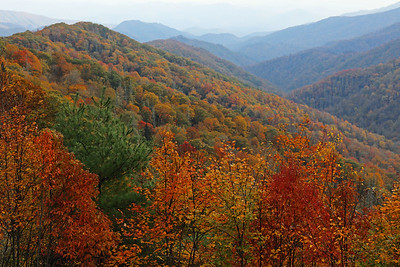 Great Smoky Mountains National Park, NC October 2016