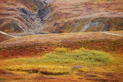 Denali National Park, AK September 2016