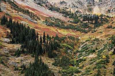 Okanogan National Forest, Washington