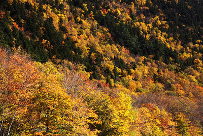 Crawford Notch State Park, New Hampshire October 2010