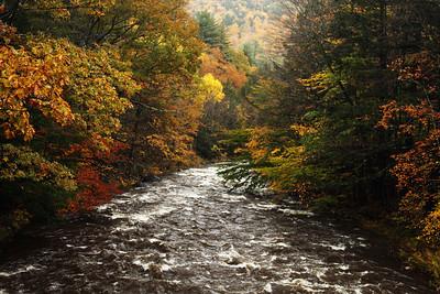 Mohawk Trail State Forest, Massachusetts October 2010
