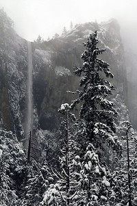 Bridalveil Fall Yosemite National Park, CA
