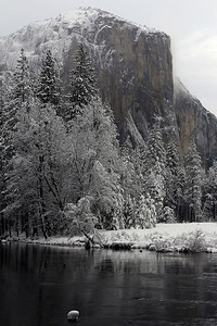 El Capitan & the Merced River Yosemite National Park, CA