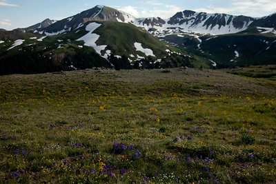 Independence Pass. White River National Forest, Colorado