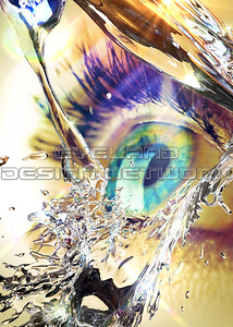 Water + Eyes 2017-005