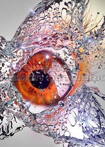 Water + Eyes 2018-013