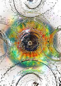 Water + Eyes 2017-002
