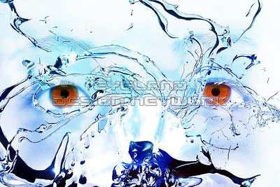 Water + Eyes 2015-002