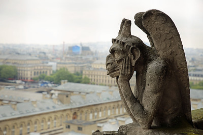 From the top of Notre-Dame Cathedral