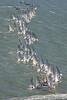 Finn Gold Cup St Francis Yacht Club