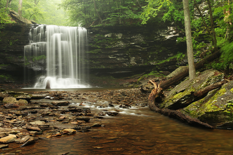 Harrison Wright Falls, Ricketts Glen State Park, PA