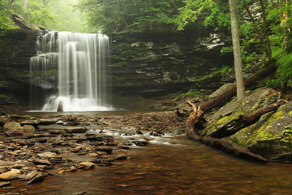 Harrison Wright Falls, Ricketts Glen State Park, PA