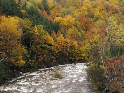 Mohawk Trail State Forest, Massachusetts