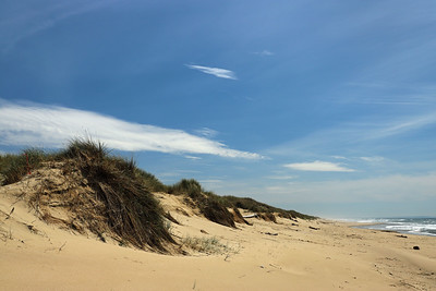 Oregon Dunes National Recreation Area, Siuslaw National Forest, OR