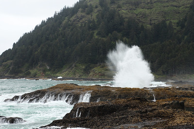 Cape Perpetua Scenic Area, Siuslaw National Forest, OR