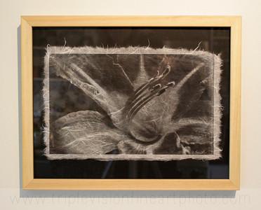 lilly+bw+on+black+framed_MG_89-3543517570-O