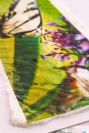 sweet+nectar+detail+3+IMG_6231-3543578057-O