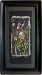 Sold!  Queen Anne's Lace