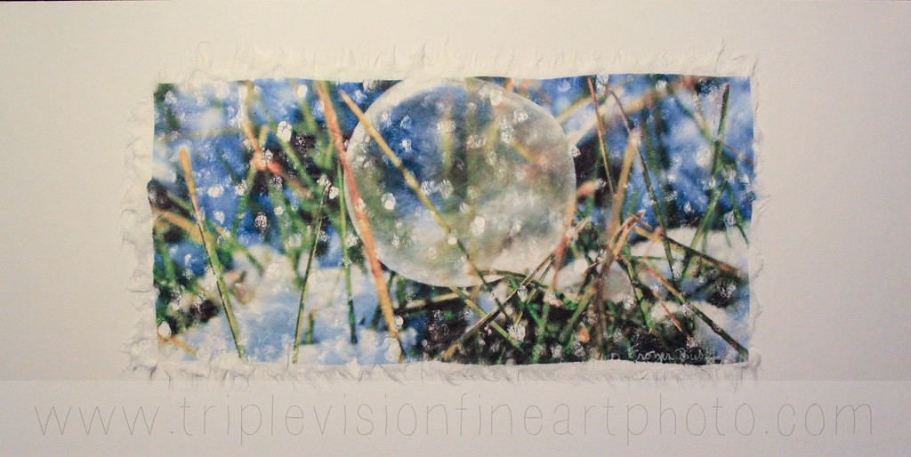 blue+frozen+bubble+wht+bal+IMG-3543301733-O