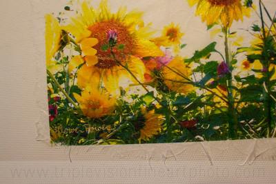 flower+power+painted+white+ury-3543335379-O