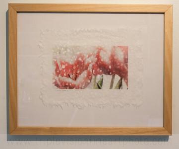 fringe+tulip+framed_MG_8908-3543342417-O