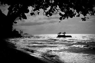 Tahiti coastline silhouette