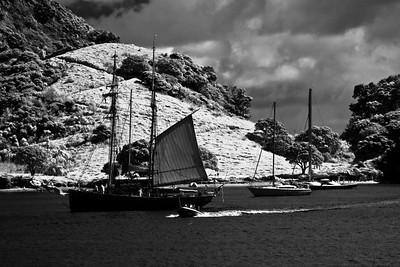 Bay of Islands sailboats, NZ