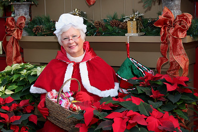 IMG_0037 Mrs  Claus