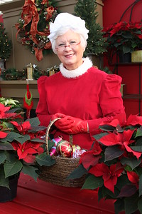 IMG_0026 Mrs  Claus