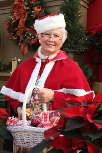 IMG_0014 Mrs  Claus