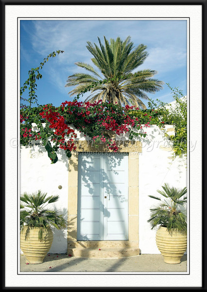 Tropical foliage and doorway in the village of Scala on the island of Patmos, Greece.
