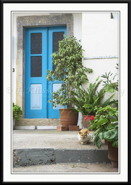 A blue door with potted plants and a cat on the island of Patmos, Greece.