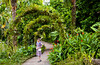 A walkway in the Singapore Botanic Gardens, East Asia.