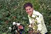 Esther Anne in a field of cotton near Suleymanli, Turkey, Eurasia.