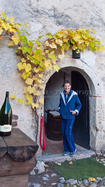 Fall foliage and wine cellar in Bled, Slovenia.