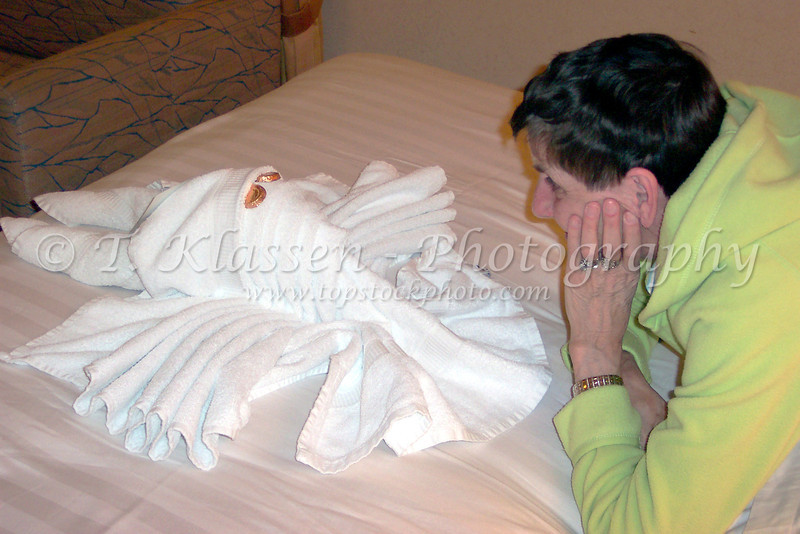 Towel sculpturing on the Holland America Cruiseship Zaandam.
